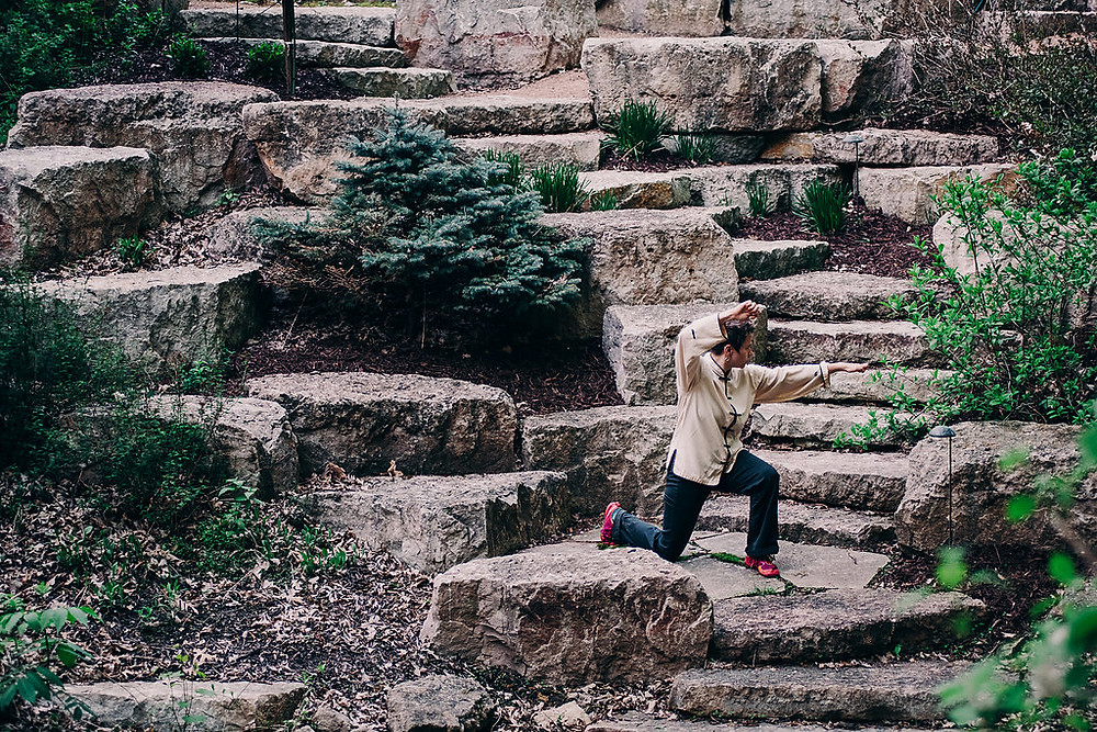 Shaolin Kungfu Sifu Molly Kubinski Five Animals