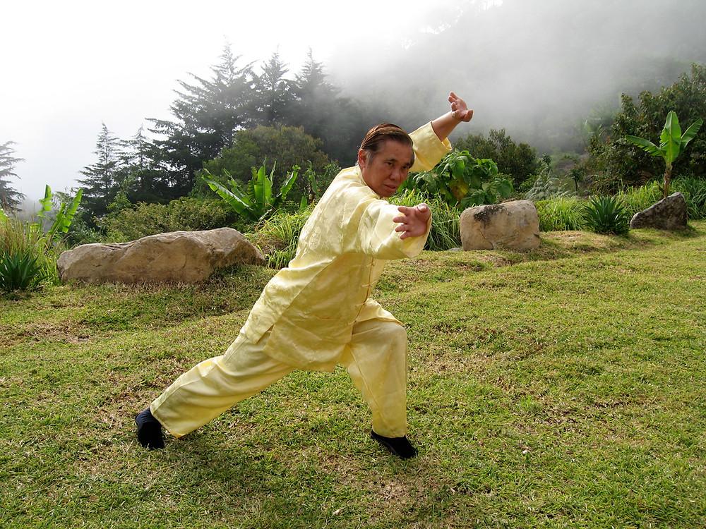 Grandmaster Wong Kiew-Kit Shaolin Kungfu