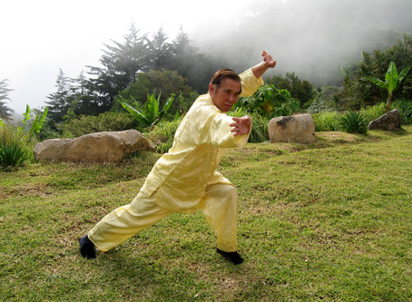 Shaolin Kungfu Level One
