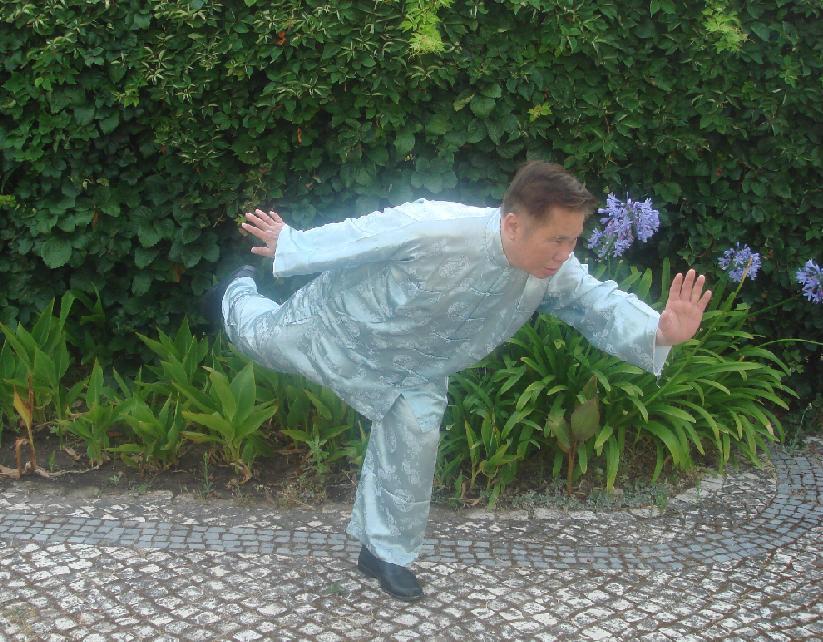 Wong Kiew-Kit Qigong Swallow through the clouds