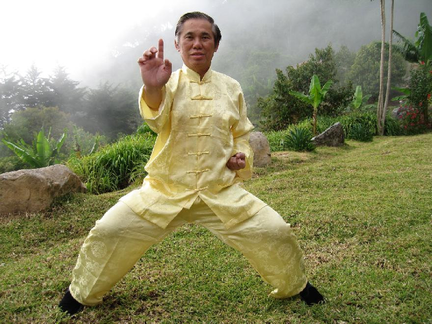 Wong Kiew-Kit One Finger Shooting Zen Shaolin Kungfu