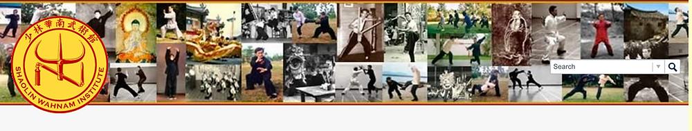 Banner heading screen shot Shaolin Wahnam discussion
