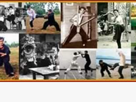 The Shaolin Wahnam Discussion Forum