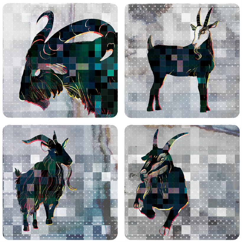 Cabras! Square Coasters  © Adolfo Valle Studios--All Rights Reserved