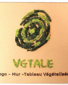 logo vegetalise.jpg