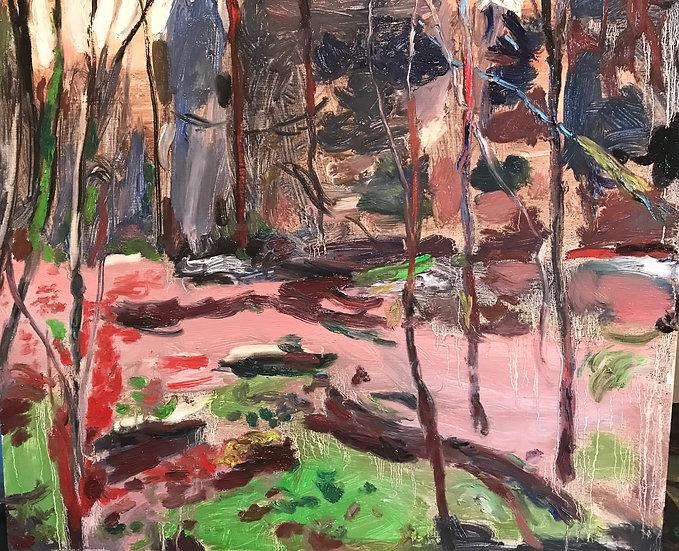 River: Study of Rainforest Goldstream Park Early Spring 2020