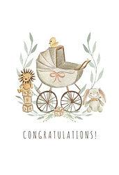 congrats stroller