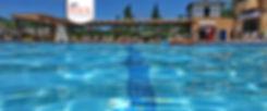 PoolWebHeader3.jpg