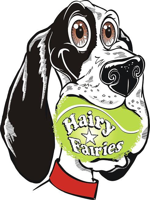 Hairy Fairies3.jpg