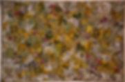 Wild  Tulip                w-56 x h-37.J
