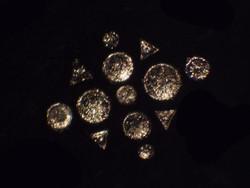 Pyritised diatoms Shrubsole Cole