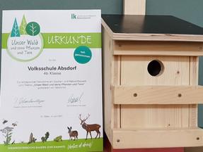 """Malwettbewerb """"Wald"""" 4.b Klasse"""
