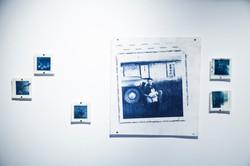 "24""x24"" Cyanotypes on rag paper, accompanied by 5""x5"" cyanotypes on premium matte photopaper, 2018"
