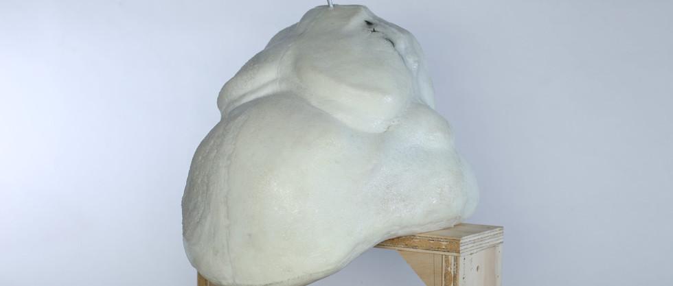 Final Foam Cast 3/4