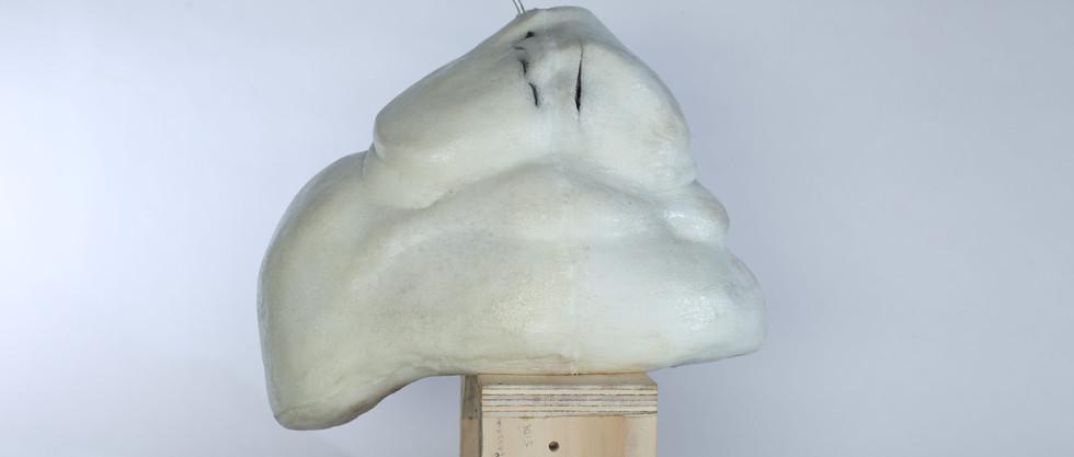 Final Foam Cast Side