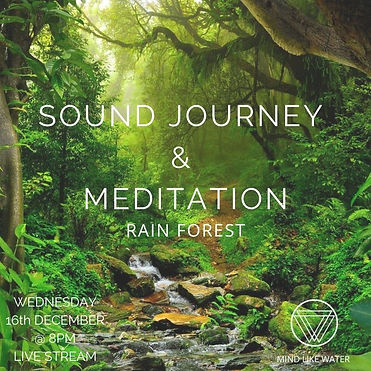 Sound Journey RAINFOREST.jpg