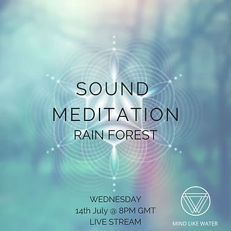 Rain Forest Sound Meditation.jpg