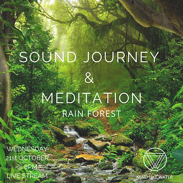 Sound Journey Rain Forest.png