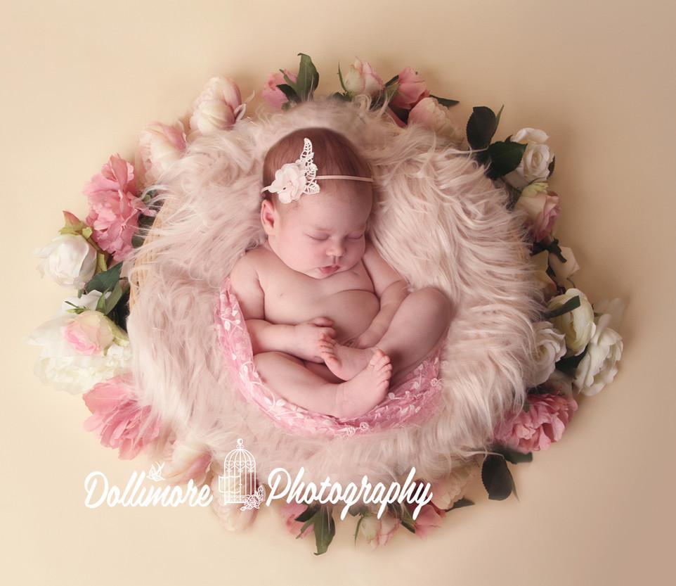 Newborn Photographer Chester