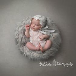 Newborn Portrait Session £50