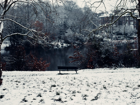 A Study in Snow, Hampstead - London | January 2021