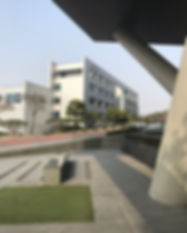 IMG_4783.jpg