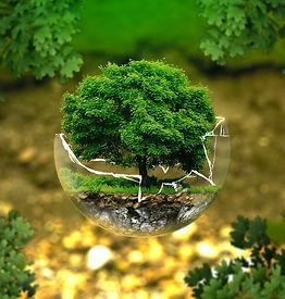 environmental-protection-326923_1280.jpg