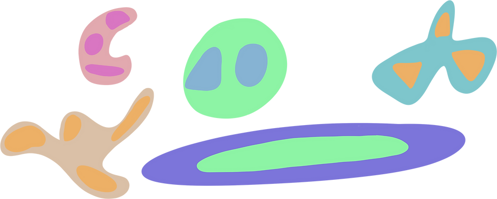paly.png