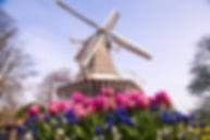 keukenhof-windmill.jpg