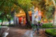 01-Goodbye-Hanoi-DSC01903.jpg