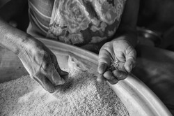 19A8792-Cleaning Rice