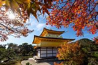 מקדש הזהב בסתיו