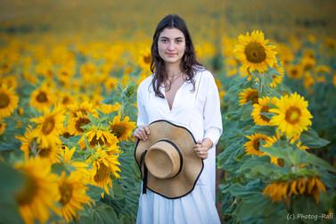Sunflower model, Israel