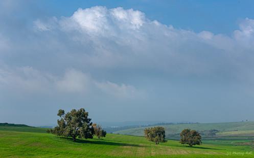 Ramot Menashe, Israel
