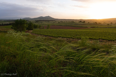 Dawn in Golan Heights