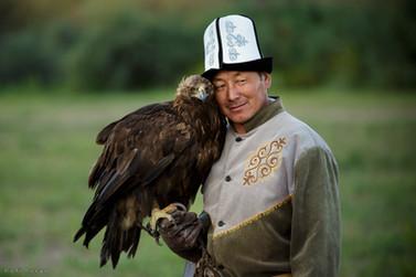 Golden eagle. Kyrgyzstan