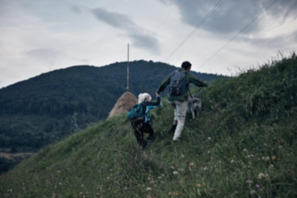 災害対策 | 犬のしつけ専門店 ワンメイク | 日本