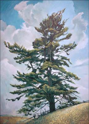 PINE TREE 48 x 36