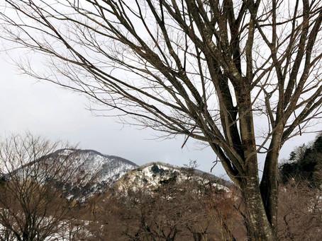 歩く。山を歩く。雪の山を歩く。