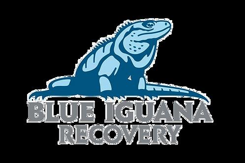 Blue Iguana Recovery Programme Grand Cayman