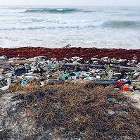garbage on beach.jpg