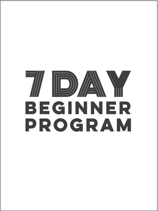 Beginner Take 2.png