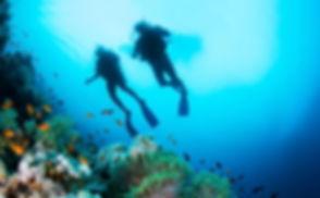 kohsamui-excursions-plongee3.jpg