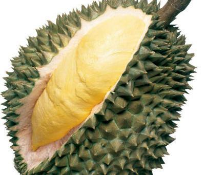 Le retour du roi des fruits: le Durian !