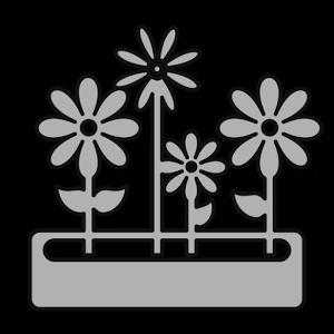 03 plante.png