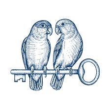 bird-logo-by-yokaona_edited.jpg