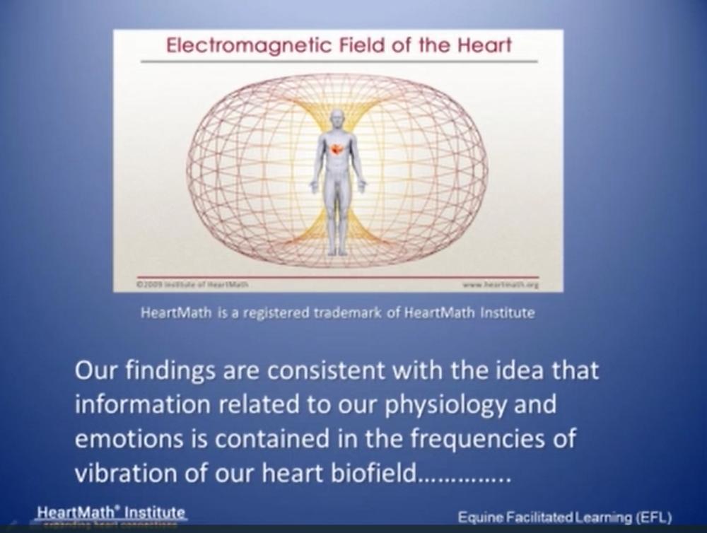 Campo electromagnetico del corazón