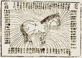 pergamino acupuntura caballo