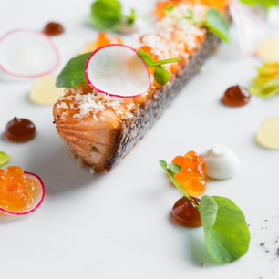 Salmon Raised on Land Could Be the Future of Seafood