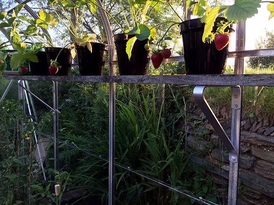 ALUMINIUM GREENHOUSE/SHELF BRACKETS